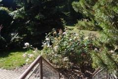 vstup do zahrady ze společenské místnosti